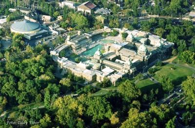 Почему стоит посетить купальни Сечени (Венгрия)?