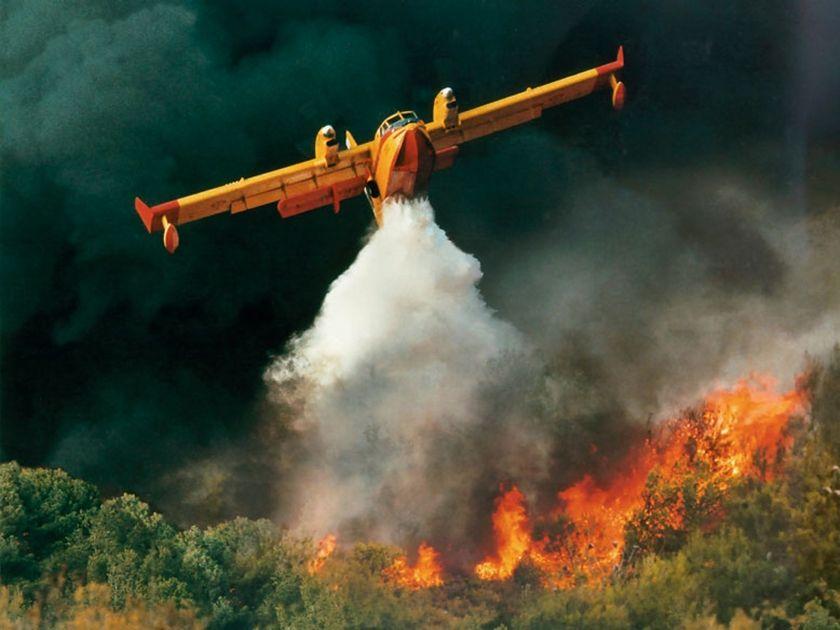 Тушение лесных пожаров самолетом.