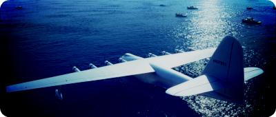 Чем известен летательный аппарат «Еловый гусь»?