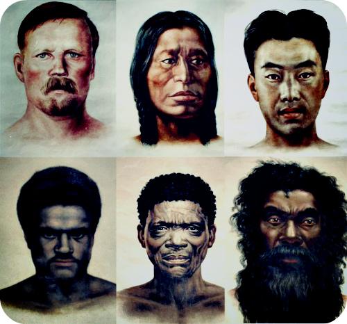 Откуда взялись расы?