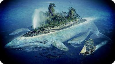 Как вымирают киты