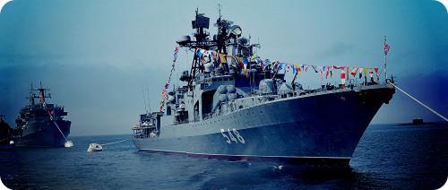 Флот ближнего боя